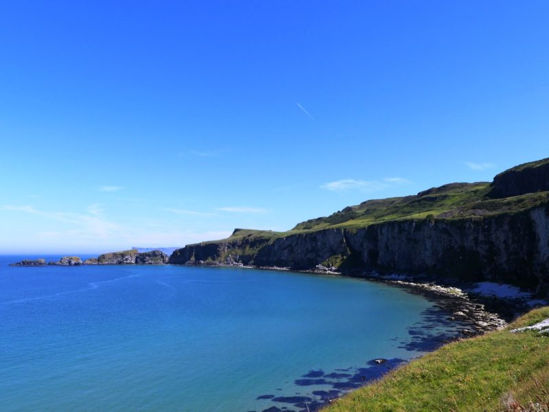 Day 7: Dark Hedges, Giant's Causeway, and Carrick-a-Rede Bridge