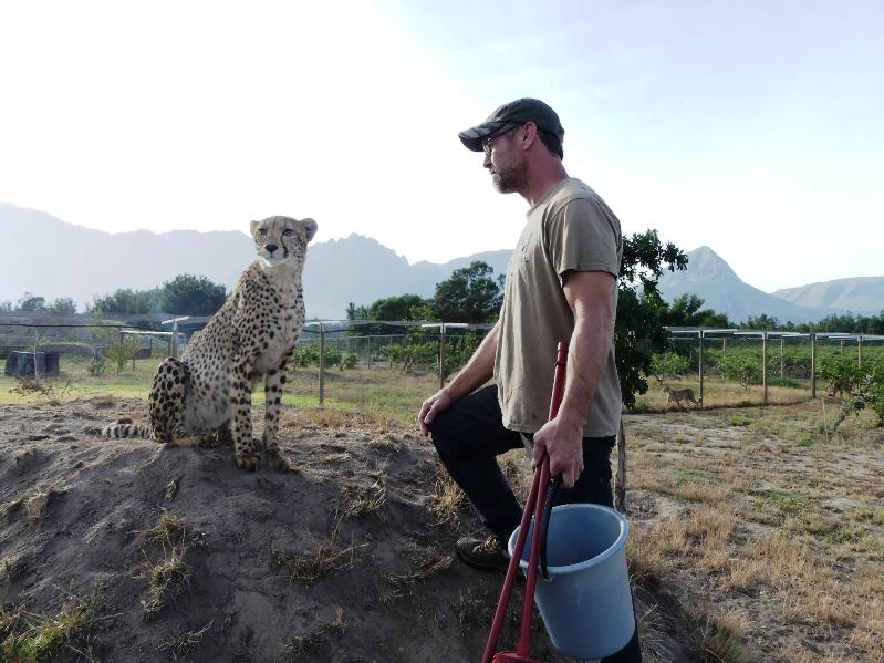 Day 22: Ashia Cheetah Experience