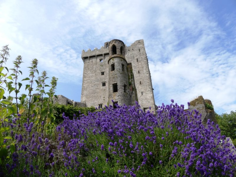 Days 9 & 10: Kissing the Blarney Stone and More Titanic