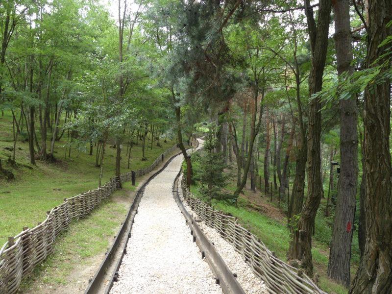 """Day 4: Bran Castle (""""Dracula's""""!), Valea Cetăţii Cave, and Rupestra Monastery"""