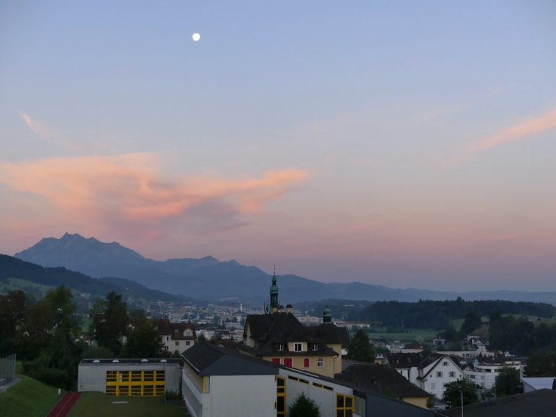 Days 3-6: Adventures in Housesitting- Root, Switzerland Edition!