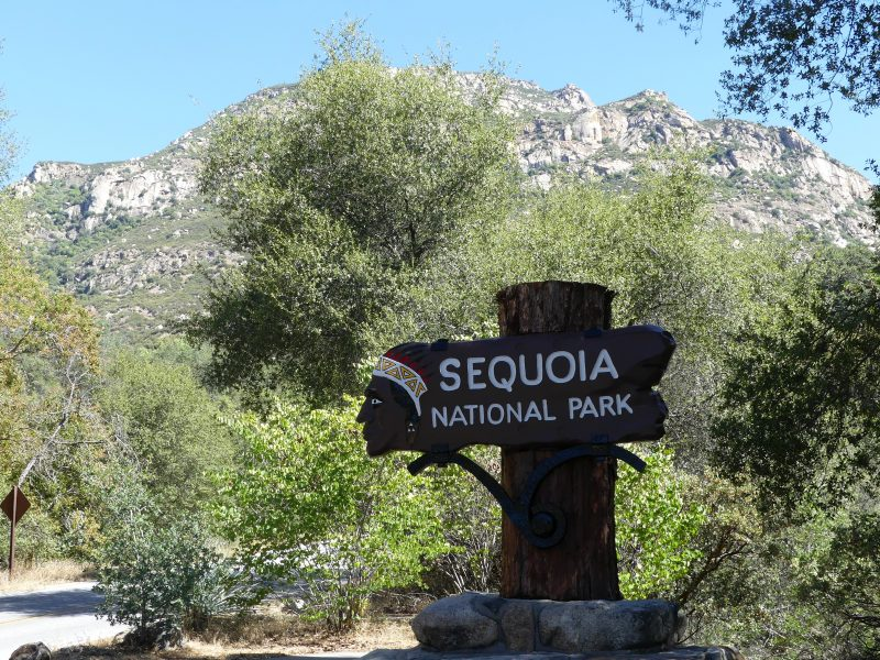 Day 1: Sequoia National Park